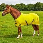 Elico Brighton Fleece Rug Lemon