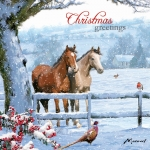 Christmas Cards :   Christmas Horses