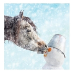 Christmas Cards: Off with his Nose (x6)