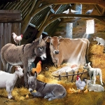 Christmas Cards : Christmas on the Farm