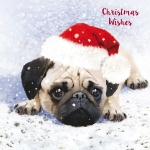Christmas Cards :   Pugs  SOLD OUT