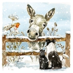Christmas Cards :  Donkey and Friends