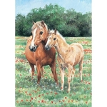 Jigsaw - Mother and Foal