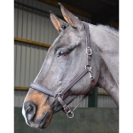 John Whitaker Ready To Ride Leather Headcollar