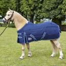 Stable Rugs image