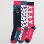 Toggi Atterby Foal Socks   SS20